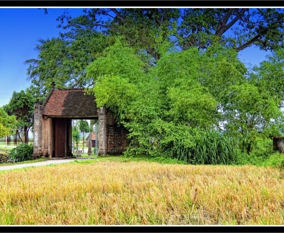 Lang Co Duong Lam 560x460