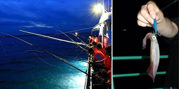 Squid Fishing In Halong Online Vietnam Visa Service