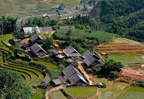 Laochai